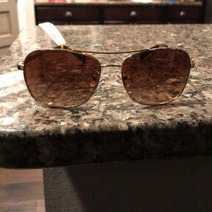 New coach aviator sunglasses